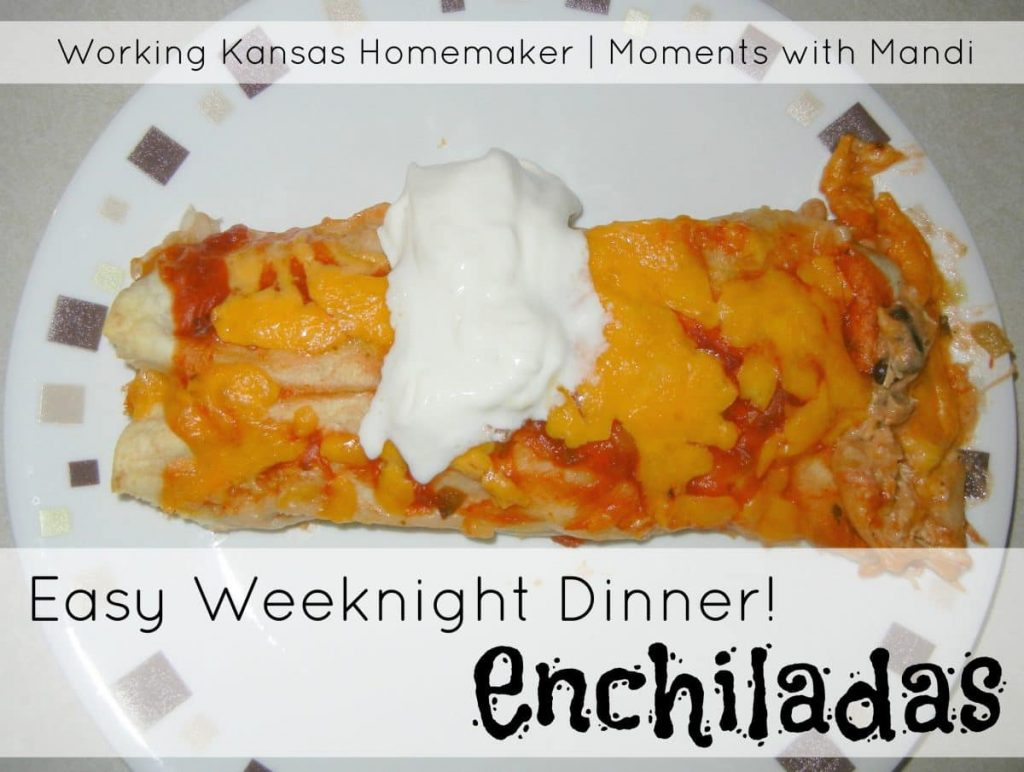 Easy Weeknight Dinner: Enchiladas
