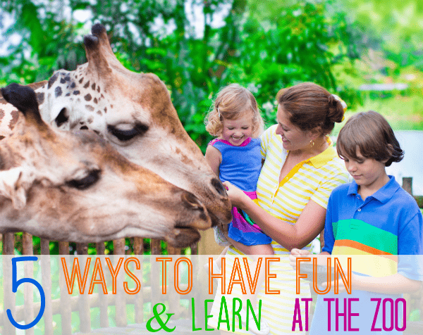 5 Ways to have fun and learn at the zoo