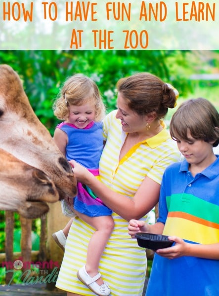 How to have fun and learn at the zoo